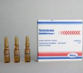 Testosteron Enantat Norma 250mg/amp